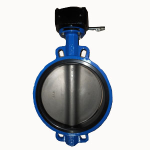 Cast Iron Butterfly Valve, Wafer CL150, 12IN