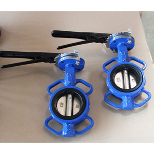 Wafer Butterfly Valve, 2 Inch, 150 LB, API 609
