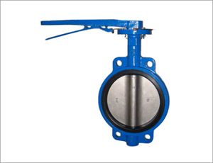 Wafer Butterfly Valve, DN80, WCB, 600LB