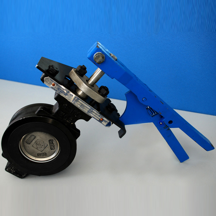 High Temperature Butterfly Valve, DN32-1600, 600#