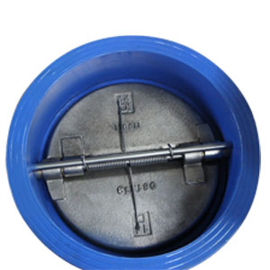 Double Disk Wafer Check Valve, 14 Inch, PN16
