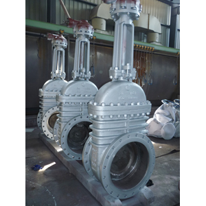 API 6D Through Conduit Gate Valve, RF, DN600