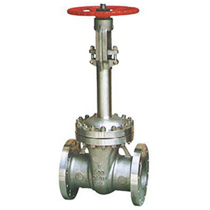 ASTM A352 Flanged Cryogenic Gate Valve, 6 Inch