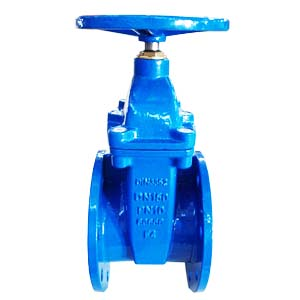 Cast Iron GG25 Gate Valve, Non-Rising, DN150