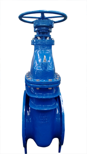 Ductile Iron Gate Valve, Flanged DN600 PN16