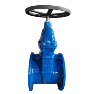 Ductile Iron Gate Valve, PN16 DN250 Flanged