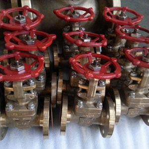 Flexible Wedge Gate Valve, B148 UNS C95800, FF