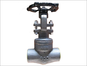 Welded Bonnet Gate Valve, ANSI A105N, NPT