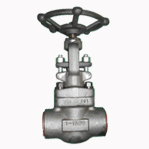 Socket Welded Globe Valve, 1 Inch, 1500 LB