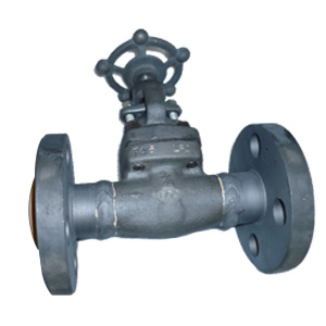 A350 Forged Steel Globe Valve, DN20, 600#, RF